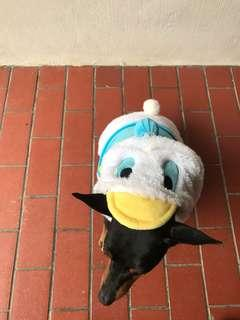 Disney Donald Duck Costume