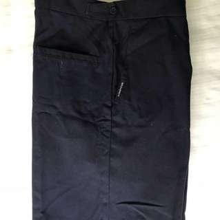 School Uniform shorts (Broadrick School) size 30