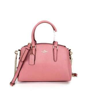 COACH Small Sage Carryall