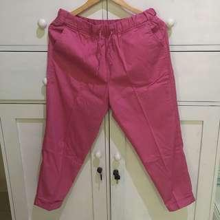 Giordano pink