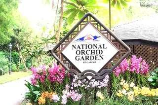 National orchid Garden  Botanical Gardens