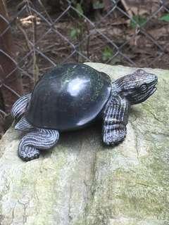 夢幻青石掌龜
