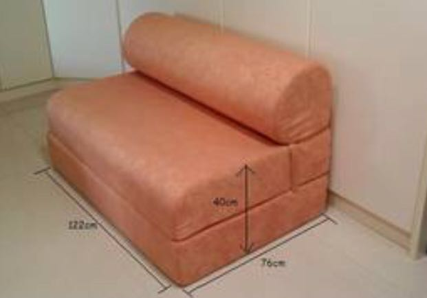 Used Seahorse Sofa Bed Furniture Beds