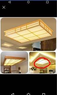 Dropped Ceiling light decoration