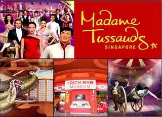 Madame Tussauds 4 in 1 Combo