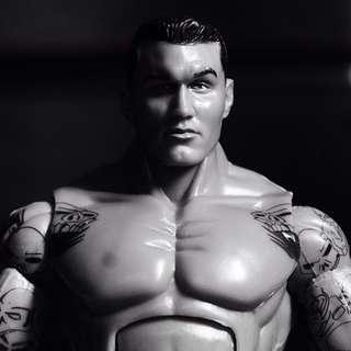 [Loose] WWE Randy Orton Action Figure