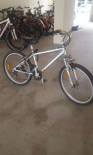 2 x bicycles
