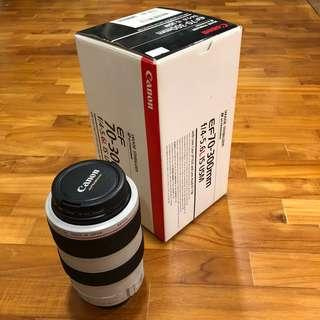 Canon 70-300mm f/4.5-5.6 L IS USM