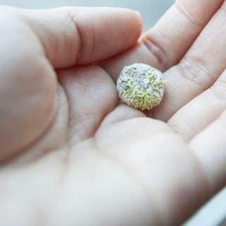 圓形手工刺繡耳環 米白色 無印風 極簡耳環 earrings 設計師手工製作