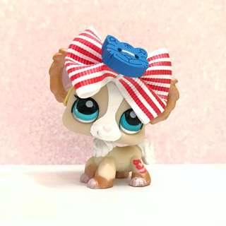 Hard to find littlest pet shop lps chihuahua (collector's diary pet)