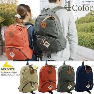 絕版Gregory Sunbird Trailblazer Day Backpack - Vintage green