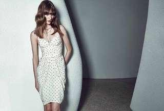 Zimmermann Seer Dot Silk Dress