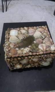 🚚 貝殼寶盒