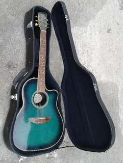 🌸 Brunswick Guitar