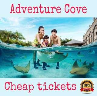 Adventure Cove Waterpark Cheap Tickets