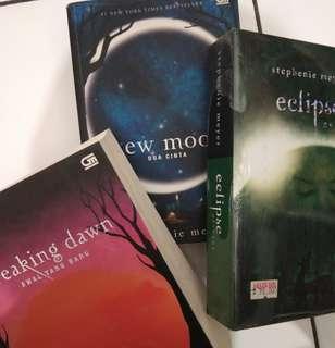 Novel Twilight Series by Stephenie Meyer