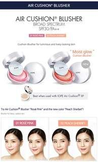 Free concealer and etc IOPE air blusher