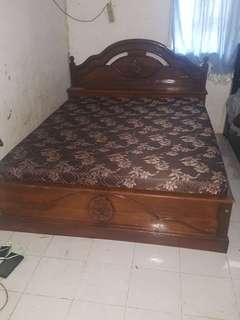 Tempat tidur jati pls springbet