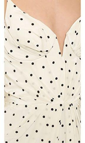 Zimmermann Seer Dot Silk Dress