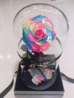 Premium Preserved rose in Glass Dome: Real rose which lasts for years without sunlight & watering🌹