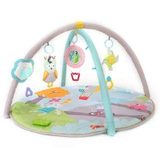 Taf Toys Activity Gym