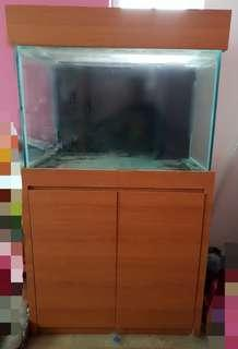 3ft Marine Tank with Sump and Eheim pump