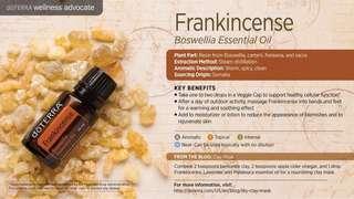 Frankincense oil King of oil