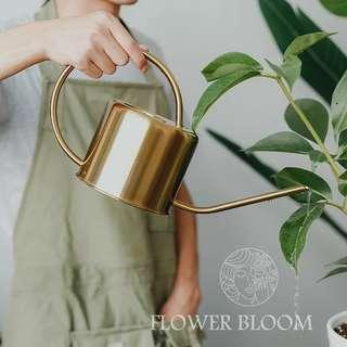 Metallic Watering Can