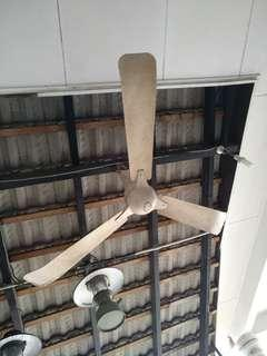 Antique indola ceiling fan