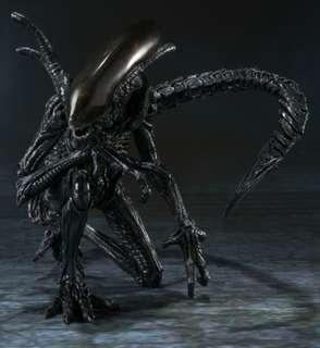 Bandai Alien S.H.Monster Art - Alien warrior 異形 戰士 SHF robot魂 鐵血戰士 Predator AVP 盒已開 玩具全新