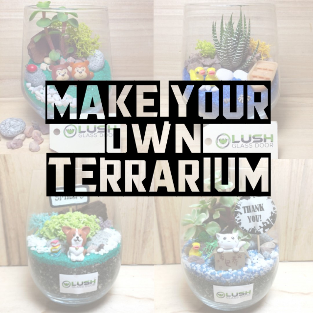 CRAFT YOUR OWN TERRARIUM FOR YOURSELF OR A PERFECT GIFT THE