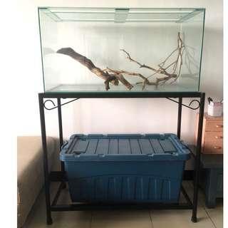 Simple Aquarium with Black Metal Support AND Manzanita Driftwood