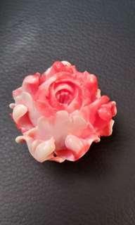 🚚 珊瑚玫瑰花