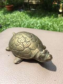 Heavy brass turtle good luck fengshui fortune