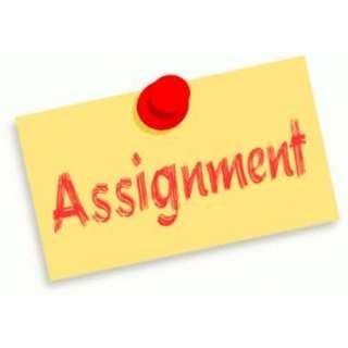 Level A, B, C and Degree WSH Assignments Essay