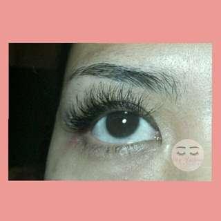 Extension bulu mata
