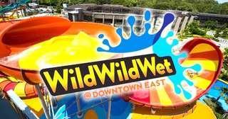 Wild Wild Wet  WWW