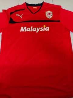 (L) 2012/13 Cardiff City Home Kit