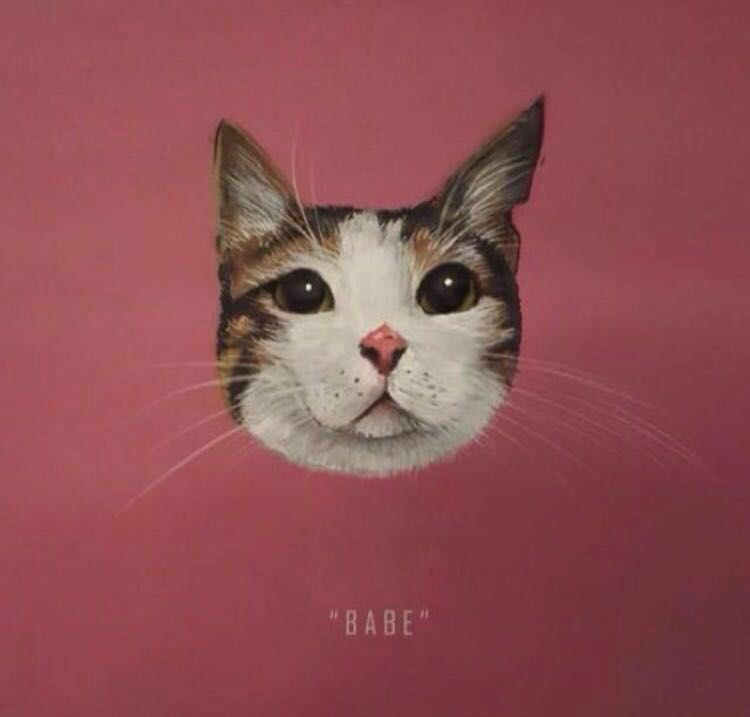 918352a6af86 Custom Cat Portrait, Pet Supplies, For Cats, Health & Grooming on ...