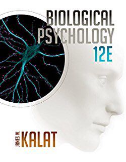PL3232 Bio Psychology Notes