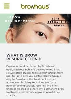 Browhaus Brow Resurrection Classic Package