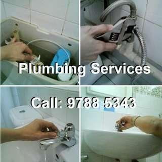 Domestic Plumbing and Sanitary Services