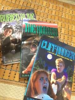 英文書三本