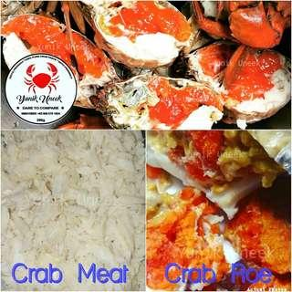 -Yunik- SALE! Freshly Dressed Crab PURE Premium Crab Meat