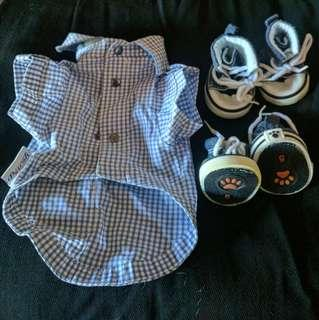 Puppy Polo and Shoes