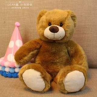 BNIP Cute Brown Soft Teddy Bear