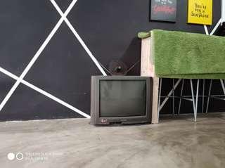 TV PERCUMA