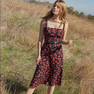 INSTOCKS Persimmon midi button down dress - black cherry