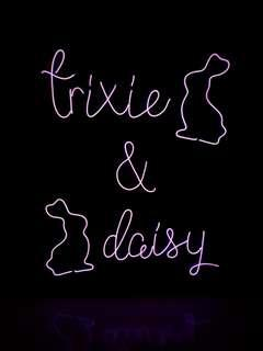 Neon Light Canvas Sign