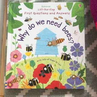 Usborne Why We Need Bees Lift Flap Book